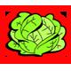 Tasty Cabbage
