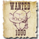 Wanted: Legendary Outlaw
