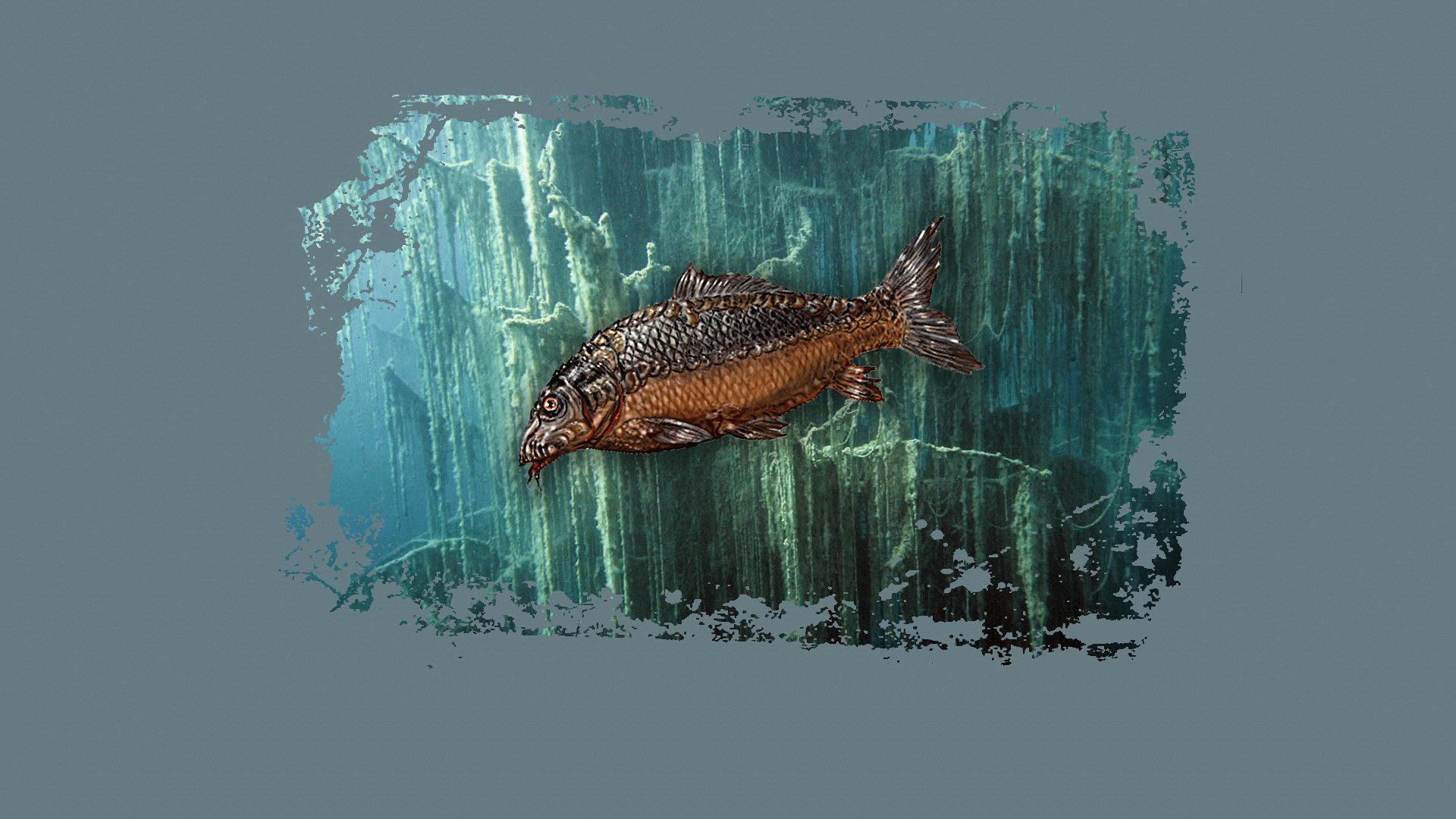 Steam Card Exchange :: Showcase :: Atom Fishing II
