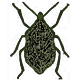 The Bug Killer