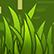 :Veggies_Grass: