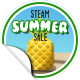 Summer Sale 2017 Lvl 150+