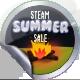 Summer Sale 2017 Foil Lvl 500