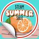Summer Sale 2017 Lvl 100+