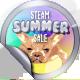 Summer Sale 2017 Foil Lvl 300