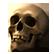 :hunky_skull: