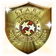 Gold S.T.A.R.S. Badge
